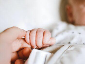 Frisches Elternglück – jetzt muss viel gelernt werden